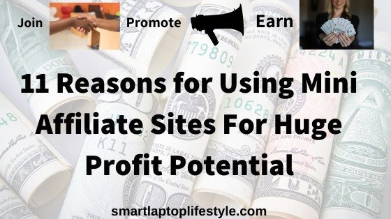 11 Reasons for Using Mini Affiliate Sites For Huge Profit Potential