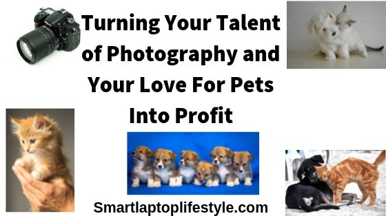 Turning your talent of photography and love for pets into profit